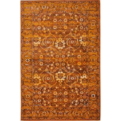Bolton Orange/Brown Area Rug Rug Size: 4 x 6