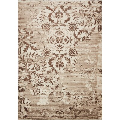 Matis Chocolate Brown/Beige Area Rug Rug Size: 5 x 8