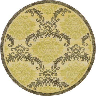 Ascencio Green Area Rug Rug Size: Round 6
