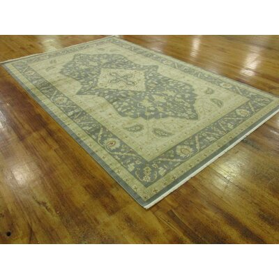 Jamar Blue/Cream Area Rug Rug Size: 7' x 10'