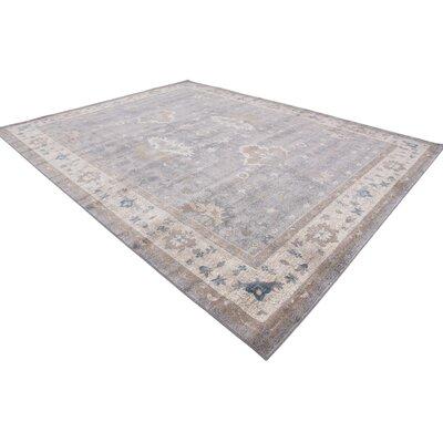 Jaiden Gray Area Rug Rug Size: Rectangle 10 x 13