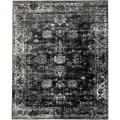 Brandt Black/White Area Rug Rug Size: Rectangle 8 x 10