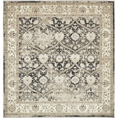 Alderson Dark Gray Area Rug Rug Size: Square 6