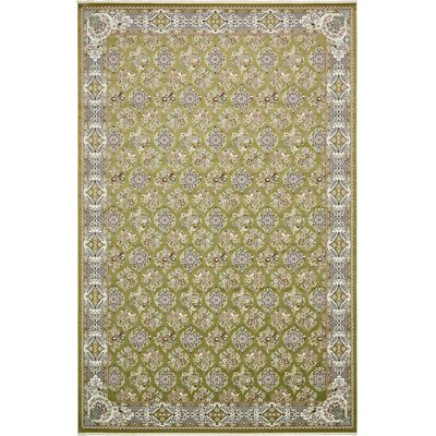 Jackson Green Area Rug Rug Size: Rectangle 5 x 8