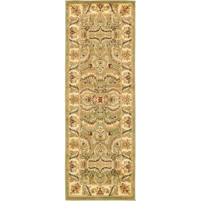 Fairmount Green Area Rug Rug Size: Runner 22 x 6