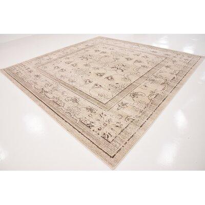 Shailene Ivory Area Rug Rug Size: Square 10