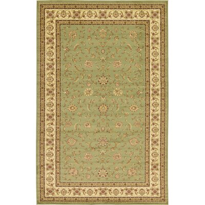 Niles Light Green Area Rug Rug Size: 106 x 165