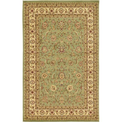 Niles Light Green Area Rug Rug Size: 5 x 8