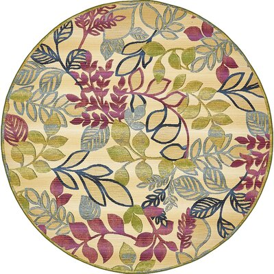 Ronda Cream Indoor/Outdoor Area Rug Rug Size: Round 8