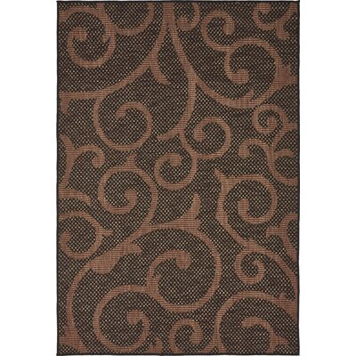 Archibald Chocolate Brown Outdoor Area Rug Rug Size: Rectangle 7 x 10