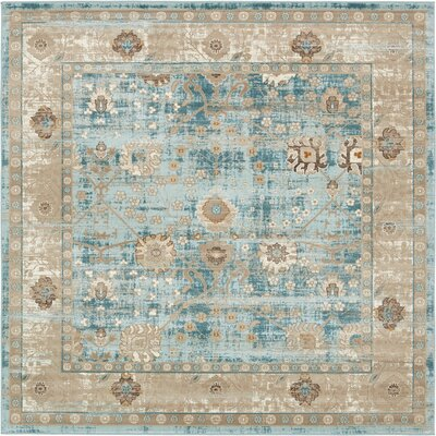 Miara Light Blue Area Rug Rug Size: Square 6