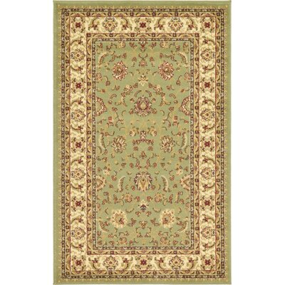 Niles Light Green Area Rug Rug Size: 33 x 53