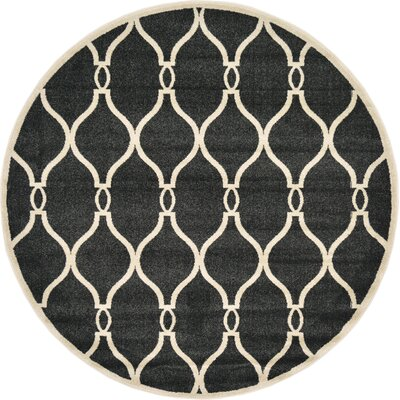 Molly Black Area Rug Rug Size: Round 6