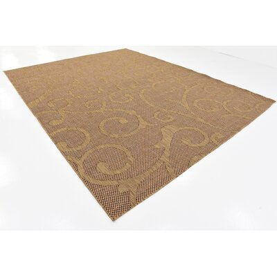 Pizano Light Brown Outdoor Area Rug Rug Size: Rectangle 9 x 12