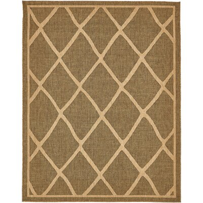Thibodeau Brown Outdoor Area Rug Rug Size: Rectangle 9 x 12