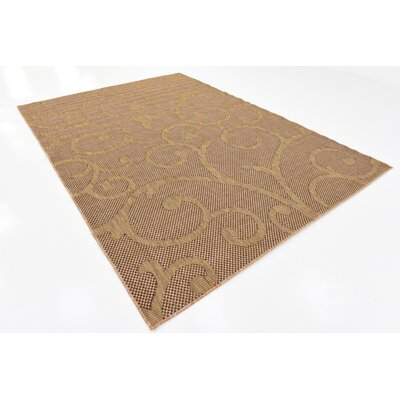 Pizano Light Brown Outdoor Area Rug Rug Size: Rectangle 7 x 10