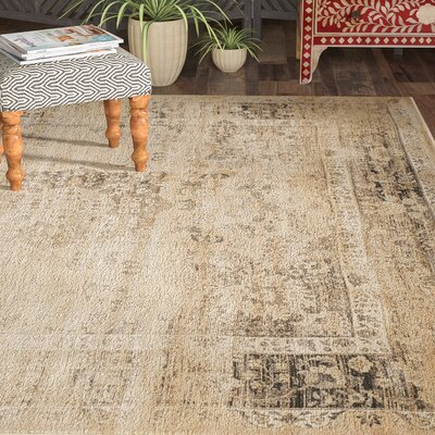 Todd Beige/Brown Area Rug Rug Size: Square 8