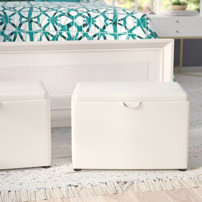 Marla Accent Storage Ottoman Upholstery: Ivory