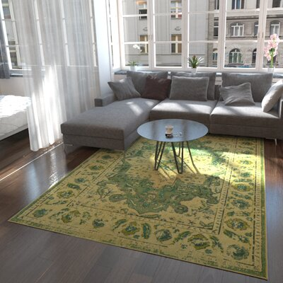 Killington Green Area Rug Rug Size: Round 6
