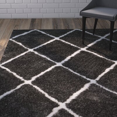 Lindsay Hand-Tufted Black/White Area Rug
