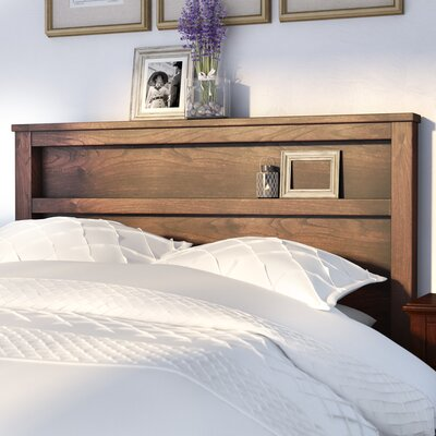 Diego Bookcase Headboard Size: Queen