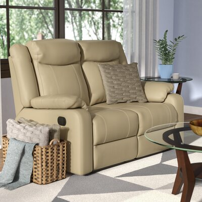Roudebush Double Reclining Loveseat Upholstery: Putty