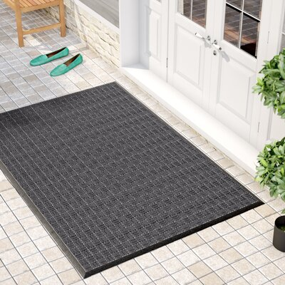 Cobham Water Retainer Rubber Doormat Mat Size: Rectangle 4 x 6, Color: Black