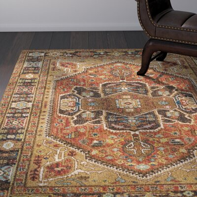 Naranjo Traditional Brown Area Rug Rug Size: Rectangle 9 3 x 12 6