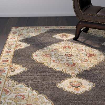 Naranjo Brown Area Rug Rug Size: Rectangle 3 11 x 5 7
