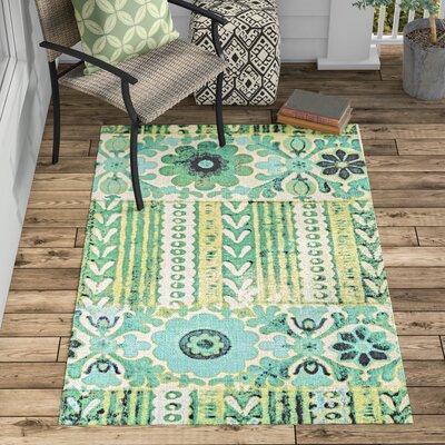 Elinore Hand Woven Emerald Indoor/Outdoor Area Rug Rug Size: 4 x 6