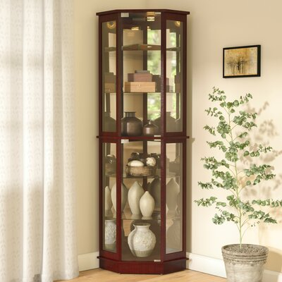 Biali Lighted Corner Curio Cabinet Color: Cherry