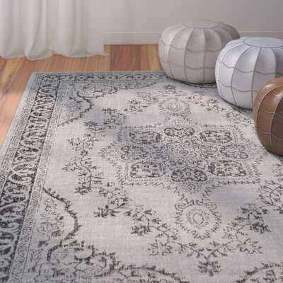 Randhir Gray Area Rug Rug Size: Rectangle 53 x 76