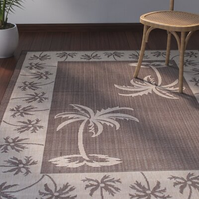 Granada Chocolate Indoor/Outdoor Area Rug Rug Size: 5 x 7