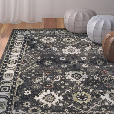 Logan Hamadan Dark Gray Area Rug Rug Size: Rectangle 27 x 5