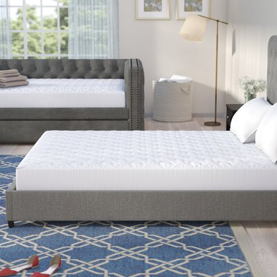 Triple Protection Waterproof Mattress Pad Size: Queen
