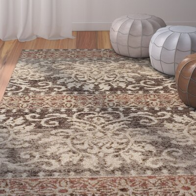Hansley Chocolate Area Rug Rug Size: Rectangle 33 x 51