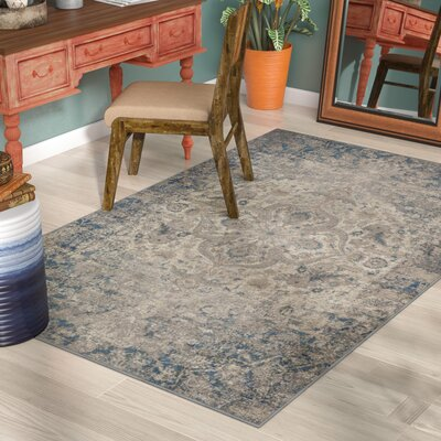 Ismael Taupe/Aqua Area Rug Rug Size: Rectangle 5 x 8
