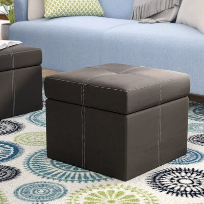 Cooper Storage Ottoman Color: Black