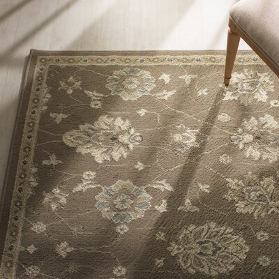 Aldan Brown/Beige Area Rug Rug Size: Rectangle 6'7