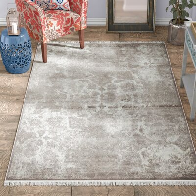 Jacobson Gray Area Rug Rug Size: Rectangle 4 x 6