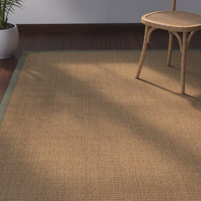 Jamesville Hand Woven Brown Area Rug Rug Size: Rectangle 12 x 15