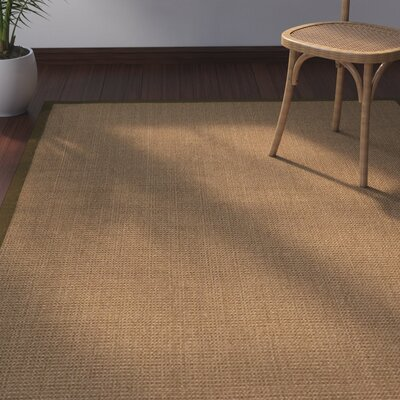 Jamesville Hand Woven Brown Area Rug Rug Size: Rectangle 4' X 6'