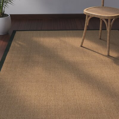 Jamesville Hand Woven Brown Area Rug Rug Size: Rectangle 6 X 9