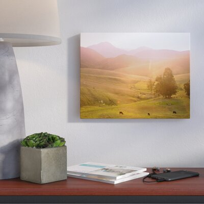 Cows Photographic Print on Wrapped Canvas Size: 11