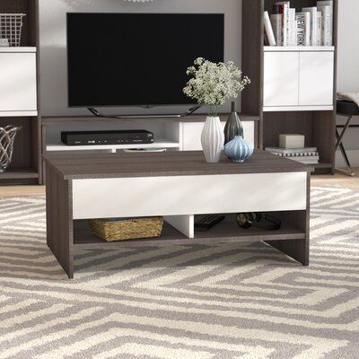 Frederick Storage Coffee Table with Lift Top Color: Dark Gray/White