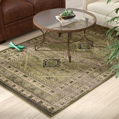 Shelie Goravan Green Area Rug Rug Size: Rectangle 5 x 76