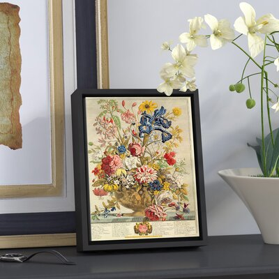 'June from Twelve Months of Flowers' Framed Graphic Art Size: 10