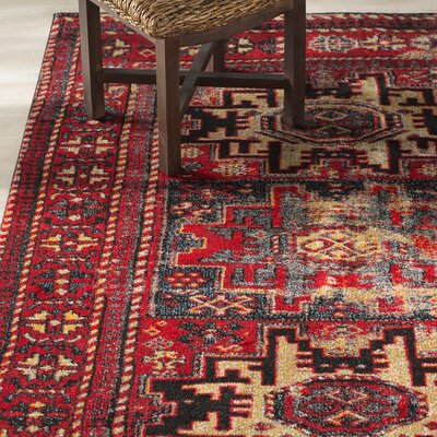Parthenia Red Area Rug Rug Size: Rectangle 53 x 76