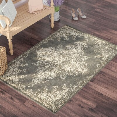 Forcalquier Rectangle Gray Area Rug Rug Size: Rectangle 9 x 12
