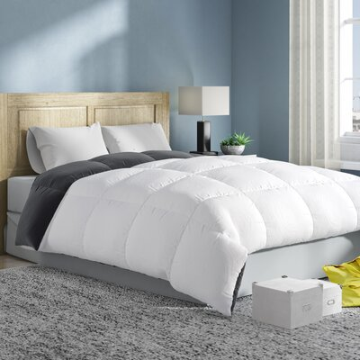 Reversible All Season Down Alternative Comforter Size: Queen, Color: White/Gray